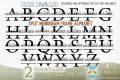 alphabet name svg
